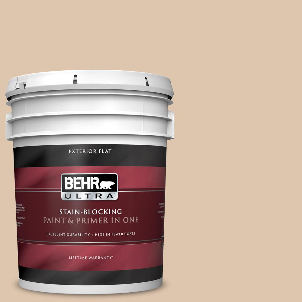 5 gal. #N260-2 Almond Latte Flat Exterior Paint and Primer in One
